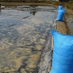 Petani Garam Jawa Tengah Masih Gagal Panen, Pelaku IKM Resah