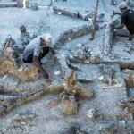 Indonesia Tetap Bangun Pusat Evolusi Manusia Asia Tenggara