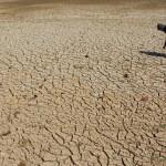KEKERINGAN SRAGEN : Waduk Botok dan Gebyar Mengering, 3.934 Ha Lahan Pertanian Terancam Puso