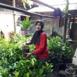 KISAH INSPIRATIF : Hobi Tanami Pekarangan Orang Lain, Perempuan Boyolali Ini Raih Kalpataru Provinsi