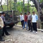 SATWA LIAR BOYOLALI : Teror Monyet Bikin Ekonomi Karanggede Seret