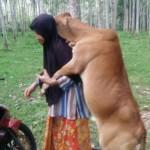 Foto unggahan Moh. Zaidi yang menjadi viral di jejaring sosial. (Istimewa/Facebook)