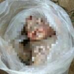 PENEMUAN BAYI SUKOHARJO : Mayat Bayi Laki-Laki Ditemukan Mengapung di Bengawan Solo