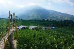 WISATA SOLORAYA : Eiffel KW Ada di Lereng Merapi Boyolali, Cocok Buat Selfi