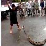 Bocah laki-laki berjoget di depan ular piton sebelum menangkapnya (Instagram)