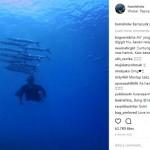 INSTAGRAM ARTIS : Menyelam Bareng Ikan Barakuda, Hamish Daud Bikin Deg-Degan
