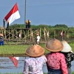 FOTO HUT RI : Hari Kemerdekaan di Rawa Pening
