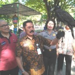 WISATA SOLO : Kebun Binatang Jurug Segera Miliki Koleksi Satwa Baru