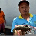 Foto LP Ambarawa Hasilkan Lobster