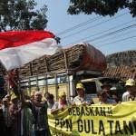 Puluhan Ton Gula Tertahan, Petani Tebu DIY Berdemo