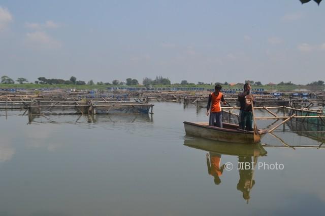 Petani ikan mendayung perahu melewati keramba ikan nila di Waduk Mulur, Bendosari, Sukoharjo, Senin (7/8/2017). (Bony Eko Wicaksono/JIBI/Solopos)
