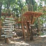WISATA WONOGIRI : Hutan Kota Kaki Gandul Dibuka untuk Wisata Alam, Ini Ragam Atraksinya