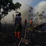 KEBAKARAN SUKOHARJO : Gara-Gara Pembakaran Sampah, Semak Belukar Kompleks BBWSBS Terbakar
