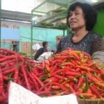 Harga Sayuran di Jogja Stabil Rendah