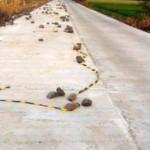 INFRASTRUKTUR KENDAL : Jalan Pegandon-Ampel Diperbaiki, Warganet Keliru Ucapkan Terima Kasih