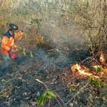 Akibat Kelalaian, Belasan Hektare Lahan di Wonogiri Terbakar