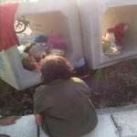 KISAH TRAGIS : Nenek-Nenek di Semarang Ini Tinggal di Bis Beton