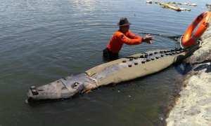 Buaya dari gabus hebohkan warga sekitar Sungai Porong Sidoarjo (liputan6.com)