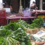 HARGA PANGAN DIY : Musim Hujan, Harga Sayur Bisa Naik Tiga Kali Lipat