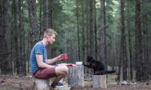 Rich East dan kucingnya Willow di salah satu hutan di Australia (Boredpanda)