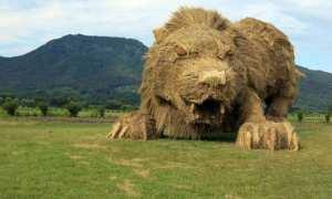 Singa raksa dari jerami sisa panen (Wara Art Festival)