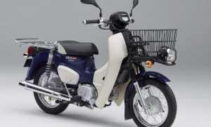 Honda Super Cub. (Istimewa)