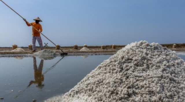 Petani memanen garam di pesisir Wedung, Demak, Jateng, Kamis (12/10/2017). (JIBI/Solopos/Antara/Aji Styawan)