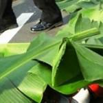 KECELAKAAN SEMARANG : Sopir Bus Tabrakan Maut Menghilang, Polisi Sudah Kantongi Identitas