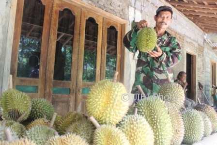 Penjual durian, Mardianto, memamerkan durian dagangannya di Tegalrejo, Jatirejo, Girimarto, Jumat (10/11/2017). (Ahmad Wakid/JIBI/Solopos)