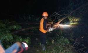 Personel BPBD Sragen memotong batang batang kayu yang patah dan menutup jalan, Selasa (14/11/2017) malam. (Dokumentasi BPBD Sragen/JIBI/Solopos)