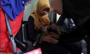 Anggota komunitas pencinta kucing melihat Mengil seusai dioperasi di Klinik Hewan Kawatan, Solo, Senin (20/11/2017). (Nicolous Irawan/JIBI/Solopos)