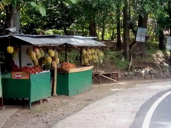 Deretan penjual durian mulai terlihat di ruas jalan Jogja-Wonosari tepatnya di wilayah Kecamatan Patuk. Rabu (1/11/2017). (David Kurniawan/JIBI/Harian Jogja)