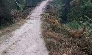 Jalan dan jembatan di Desa Bandungharjo, Kecamatan Toroh, Kabupaten Grobogan, Jateng. (Facebook.com-Dwiekkocak Gaplex)