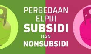 Grafis perbedaan elpiji subsidi dan nonsubsidi (Whisnu Paksa/JIBI/Solopos)
