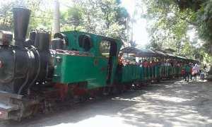 Sejumlah pengunjung menumpang kereta api di Agrowisata Sondokoro, Tasikmadu, Senin (25/12/2017). (Istimewa)