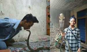 Syahril bermain ular kobra (Facebook)