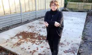 Sonia McColl yang kehilangan rumahnya. (Istimewa/thesun)