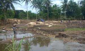 Sejumlah petani di Dusun Gelaran I, Desa Bejiharjo, Kecamatan Karangmojo sedang memperbaiki lahan persawahan pasca rusak disapu banjir, Selasa (12/12/2017). (JIBI/Irwan A. Syambudi)