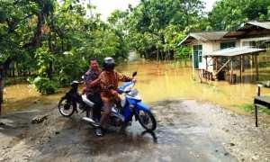 Seorang pengendara tidak jadi melintas karena jalan di Dusun Jasem Lor, Desa Pacarejo terendam air akibat luapan dua telaga di kawasan tersebut, Jumat (12/1/2018). (IST/Dok Pemdes Pacarejo)
