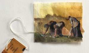 Ilustrasi skrub dari gula pasir dan minyak kelapa (Boldsky)