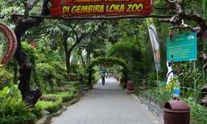 Kebun binatang Gembira Loka (Instagram)