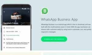 Whatsapp Business (Istimewa)