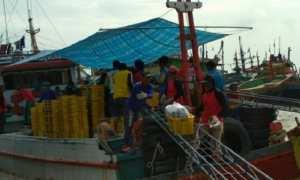 Nelayan menurunkan ikan hasil tangkapan di laut untuk dilelang di Tempat Pelelangan Ikan (TPI) Unit II Juwana, Kabupaten Pati, Jateng. (JIBI/Solopos/Antara/Akhmad Nazaruddin Lathif)