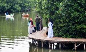 Wisatawan di tengah hutan bakau (mangrove) Maerokoco di Kota Semarang, Jateng, Minggu (21/1/2018). (JIBI/Solopos/Antara/Aditya Pradana Putra)