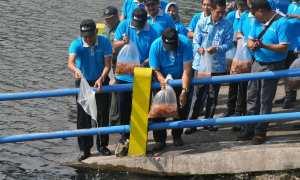 Bupati Sleman, Sri Purnomo (kiri) bersama dengan sejumlah pejabat menebar bibit ikan di Embung Tambakboyo, Kamis (22/3/2018). (JIBI/Irwan A. Syambudi)