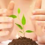 CSR PERUSAHAAN : 92 Perusahaan di Klaten Belum Terapkan Program CSR