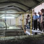 PG Tasikmadu pengunjung bisa melihat proses pembuatan gula pasir yang berlangsung pada saat musim giling tebu saat ini. (JIBI/Solopos/dok)