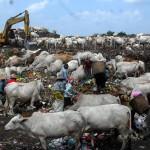 PENGELOLAAN SAMPAH SOLO : Retribusi Sampah Rumah Tangga Naik Rp2.000