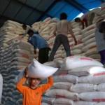PUPUK BERSUBSIDI : Penyaluran Pupuk Bersubsidi Capai 5.185,30 Ton