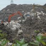 POLUSI UDARA : Warga Plesungan Terganggu Asap Pembakaran Sampah Putri Cempo
